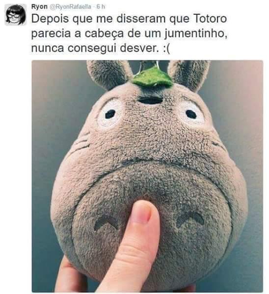 Totoro, jumento, studio Ghibli